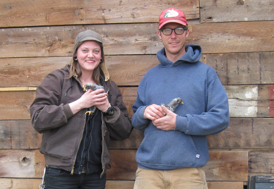 Introducing Lori and Jason of Diamond Hill Farm