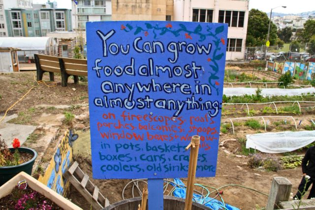 Filmmaker Dan Susman on Filming the Urban Agriculture Revolution