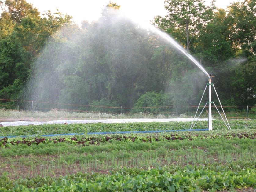 Hartwood sprinkler
