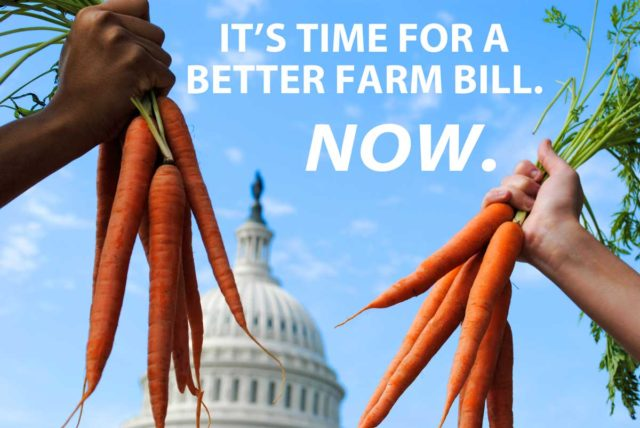 Team Up with NYFC for a Better Farm Bill