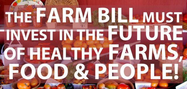 Cast Your Vote for a Fair Farm Bill!