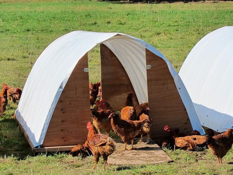 Deck Family Farm - awardee in 2012.  Photo courtesy of FACT