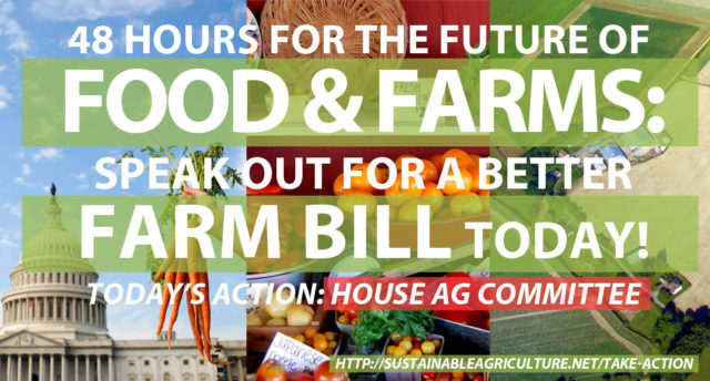 This week the House and Senate Agriculture Committees are working on the 2013 Farm Bill!
