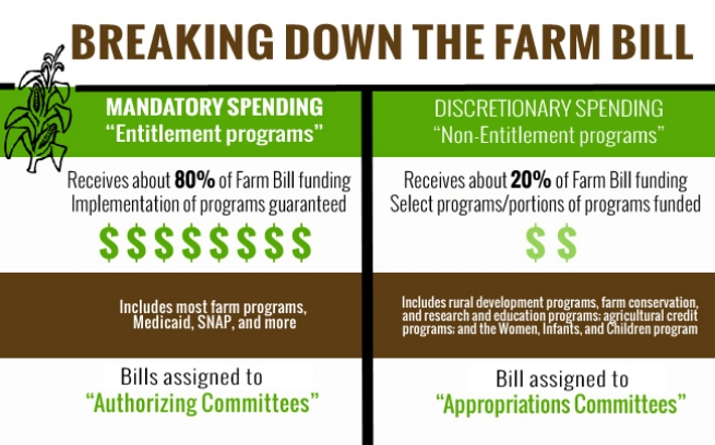 Breaking Down the Farm Bill, graphic by Lauren McKown