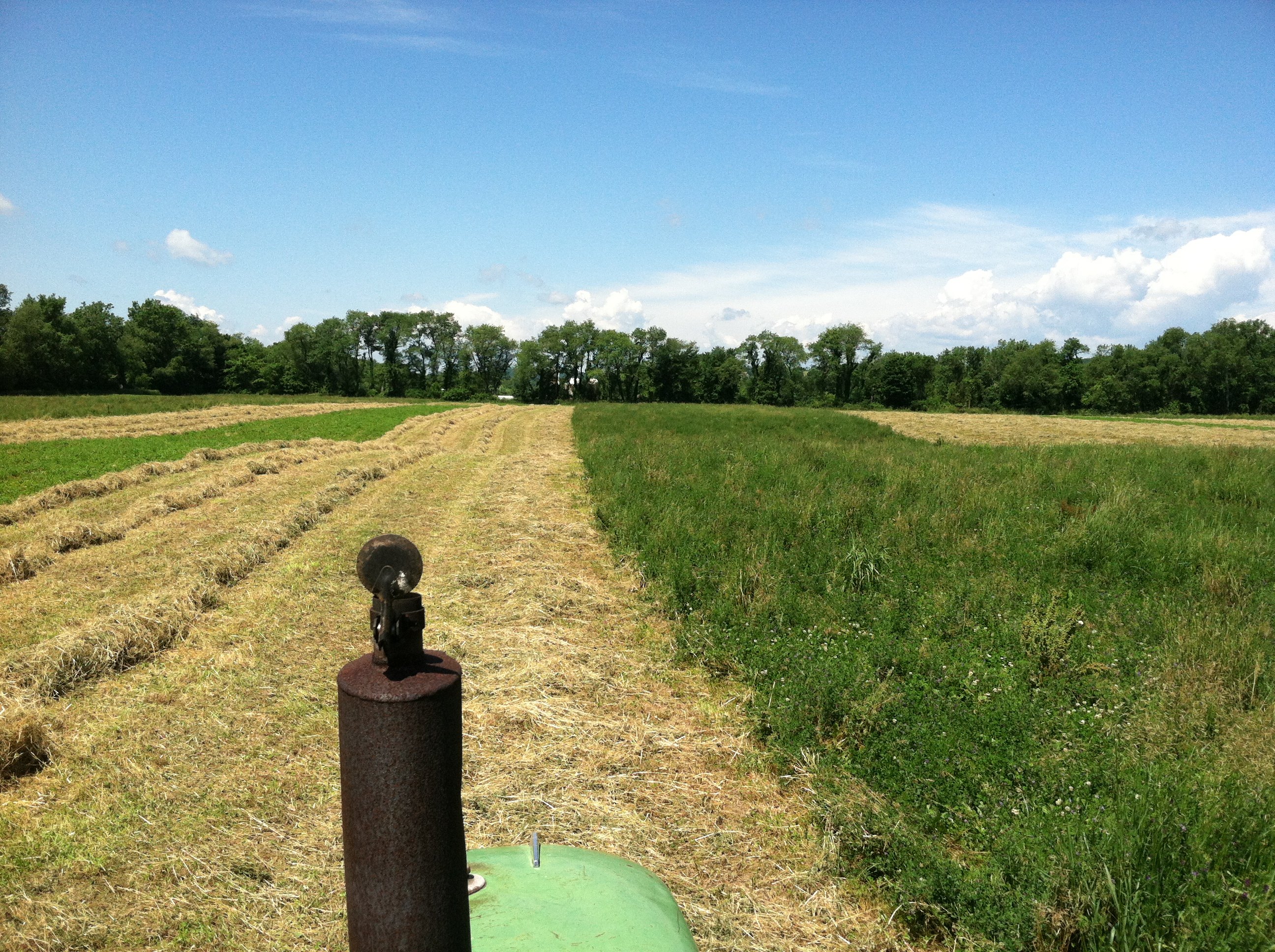 Chaseholm Farm - view from the tractor