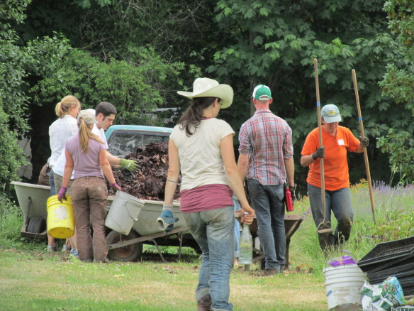 Heading to the next task at the Persesphone Farm crop mob, photo courtesy of Jacqueline Cramer