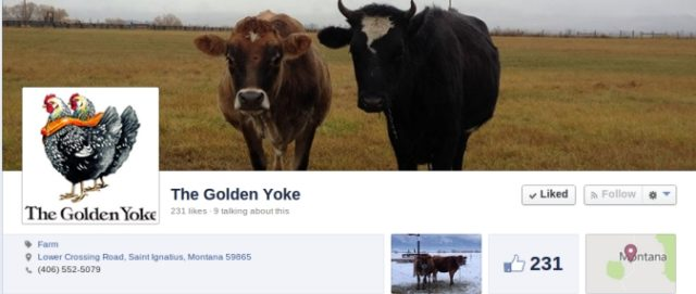 Is social media working for your farm?