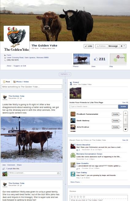 The Golden Yoke - facebook example