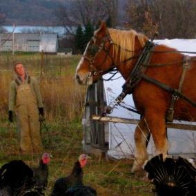 Introducing Good Life Farm, from Interlaken, New York