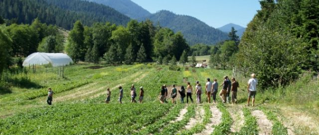Apply now for the Oregon-based Advanced Farmer Training Program