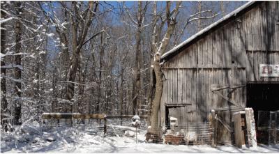 Nightfall Farm - intro pic 1