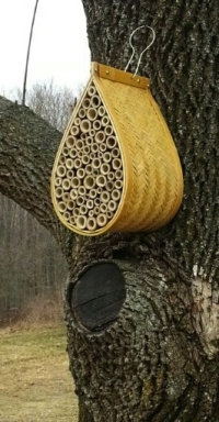 Mason bee house - small