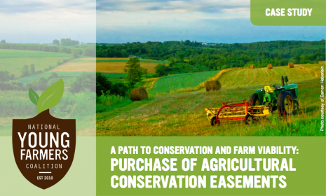 Step 3: Purchase of Agricultural Conservation Easements