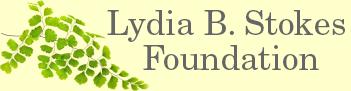 Lydia B. Stokes