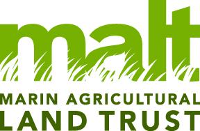 MALT_Logo_4C