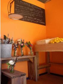 Lemonade-Springs-intro-post-pic-1-211x280