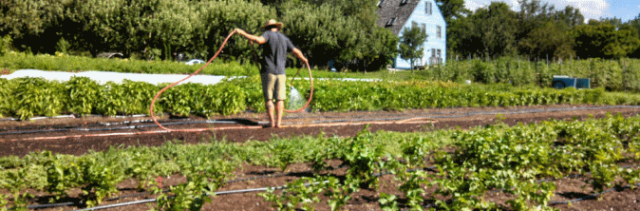 USDA Announces Increased Funding to Organic Growers