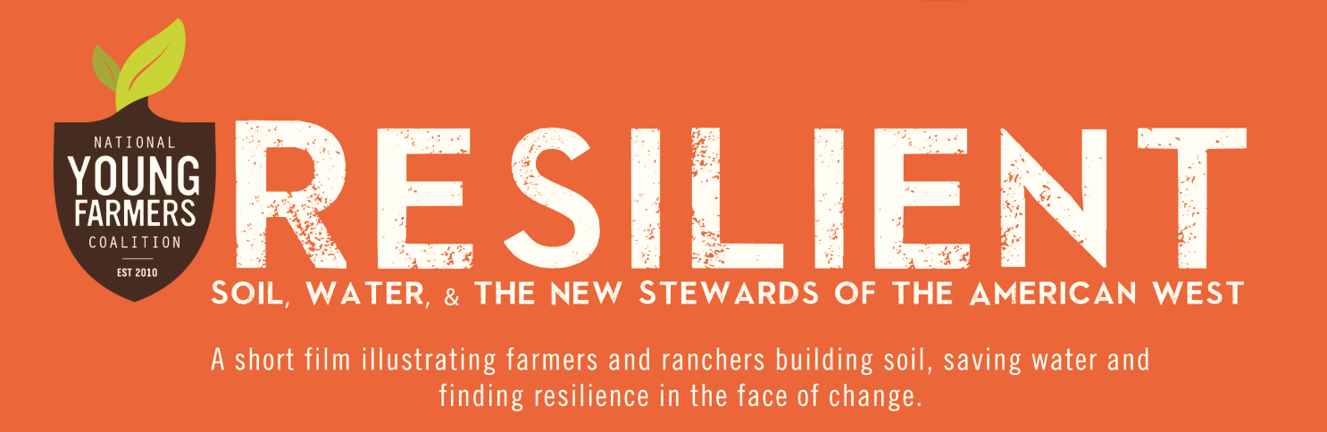 Resilient screening banner