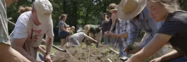 VIDEO: Don't farm alone… Start a crop mob!
