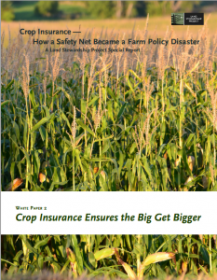 LSP Crop Insurance - white paper 2