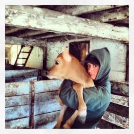 Chaseholm Farm - Dayna and Blue Ivy - small
