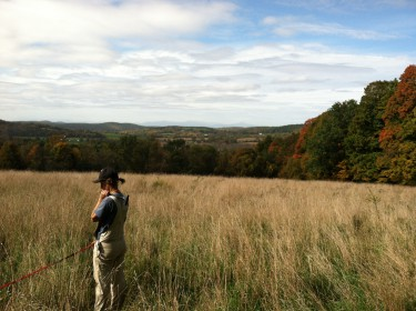 Chaseholm Farm - Dayna in field