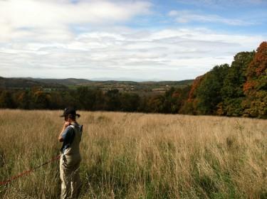 Chaseholm Farm - Dayna in field