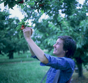 Caitlin Picking Cherries 2007