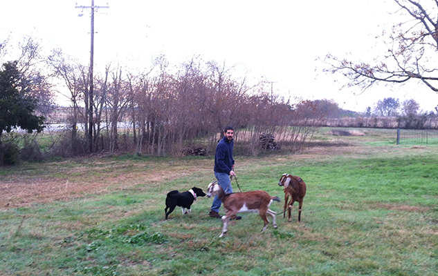 Derek and goats_cropped
