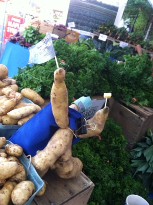 Fingerling super hero! (AKA, a slow day at the farmers market.)