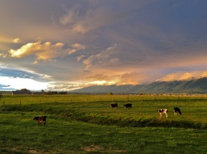 The-Golden-Yoke-Sunset-after-a-storm-small