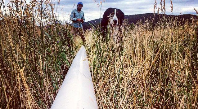 Topp_Irrigation pipe_cropped