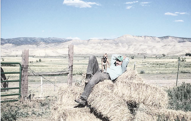 haybale hangin-Harrison_cropped