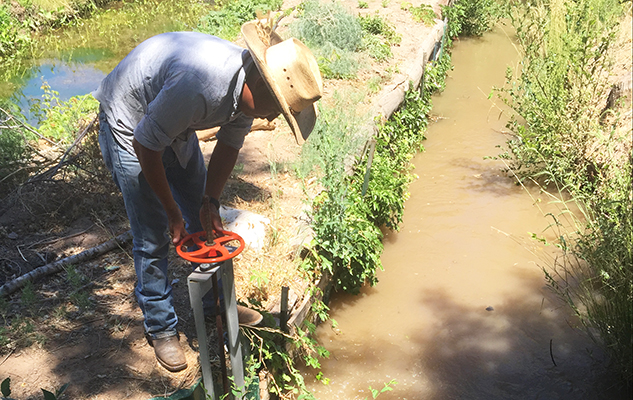 Managing water: a new farmer and a very old acequia