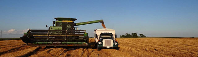 Heart and Grain: Big farms require big equipment. And lots of money.