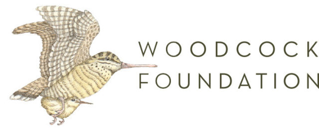 woodcock_foundation