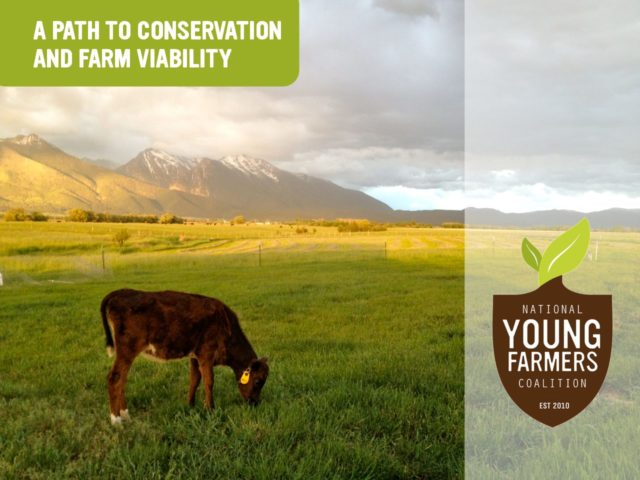 A Path to Conservation and Farm Viability: Case Studies
