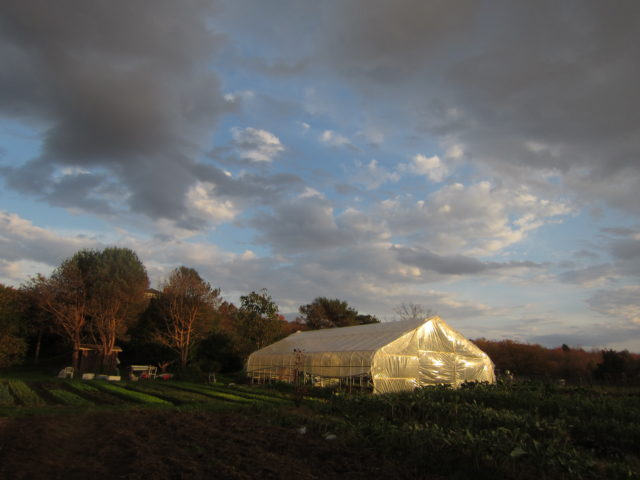 Last Chance in this Farm Bill for Beginning Farmers and Our Farmland