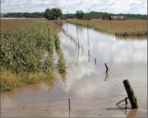 Food Safety for Flooded Farms