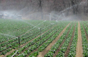 FSMA Produce Safety Rule Water Testing Methods and Requirements