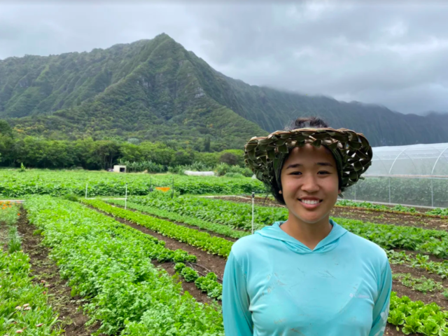COVID-19 Farmer Stories: Haley Miyaoka, Honolulu, HI