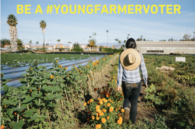 Four ways to put young farmer issues on the table in the 2020 elections