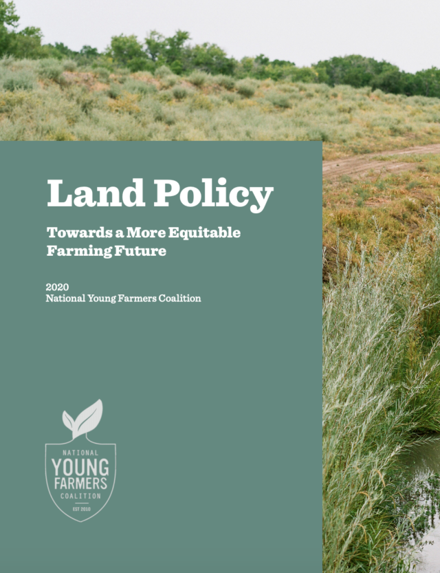 Land Policy Report